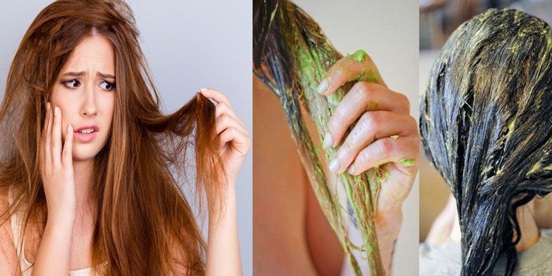 Como recuperar cabelo detonado, usando receitas caseiras